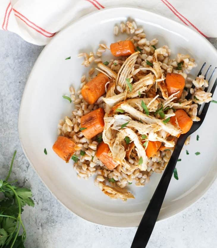 pulled chicken on a plate with rice and carrots