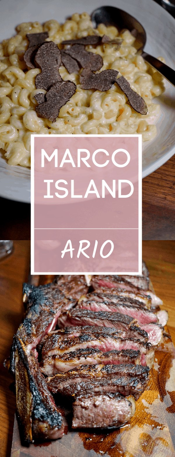 Known for their 35 day dry aged steaks, Ario in Marco Island is one spectacular restaurant. From the casually elegant ambiance to the thoughtfully prepared menu, Ario is nothing short of amazing.