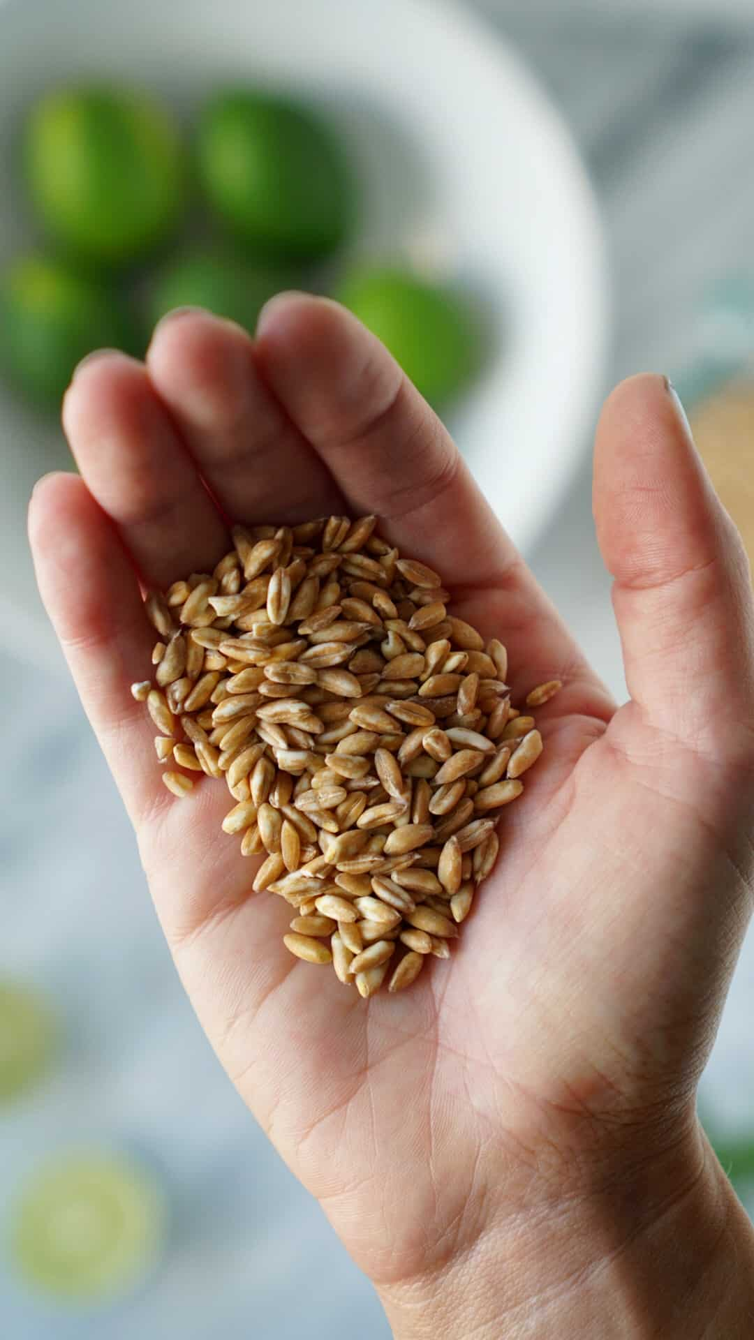 Raw farro in hand with limes in the background