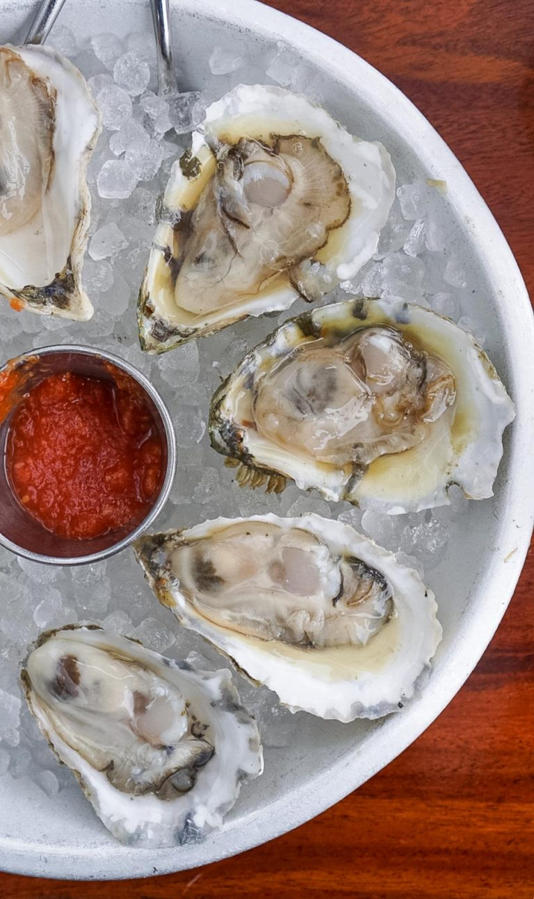 raw oysters on ice from one of the best portland maine restaurants