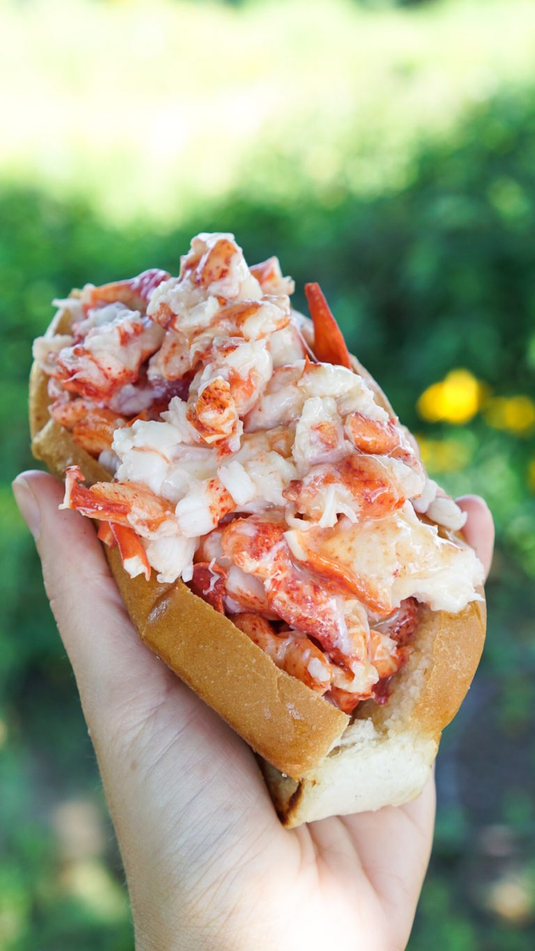 a hand holding a lobster roll from bite into maine