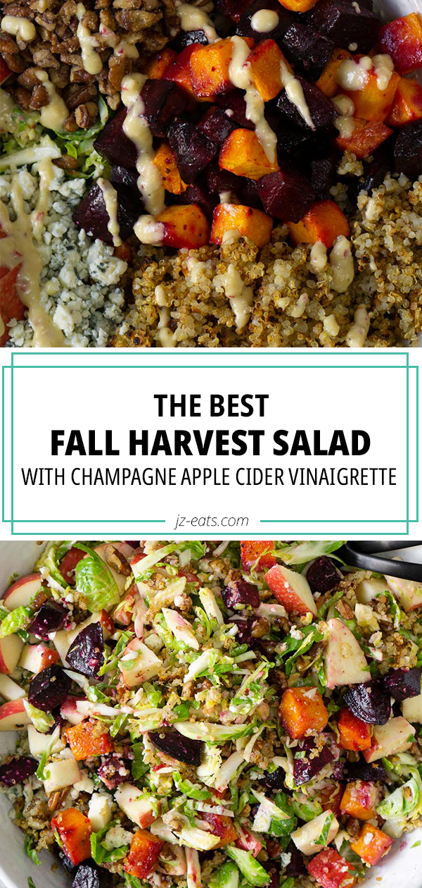 harvest salad pinterest long pin