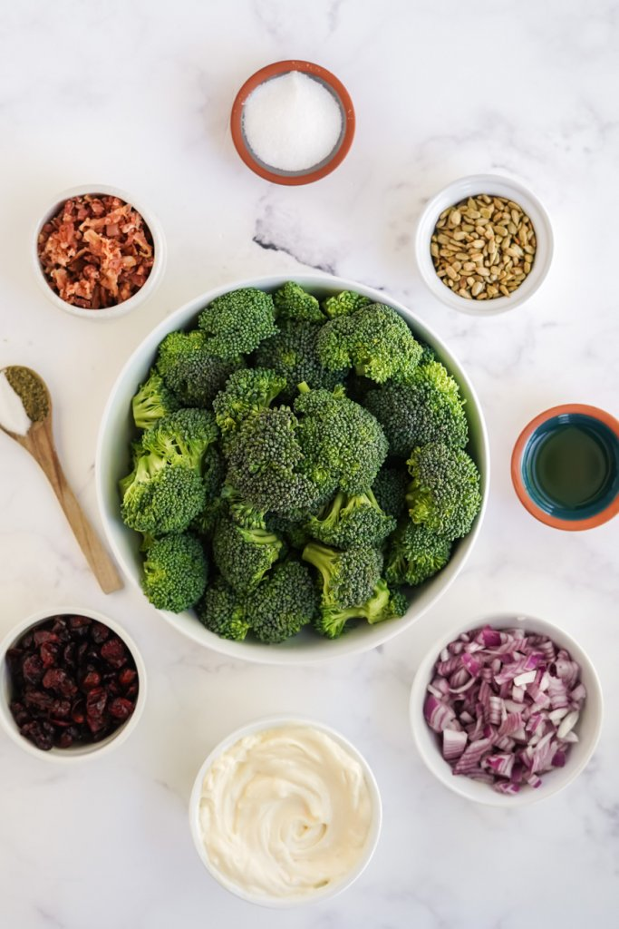 ingredients in small bowls: broccoli, red onion, bacon, mayonnaise, cranberries